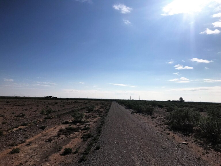 88.43 Acres CR 420 Pecos, TX
