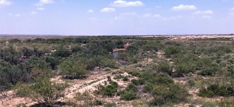 Ligon Family Ranch