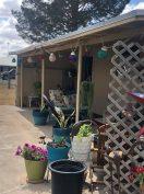 502 Oleander Property_20