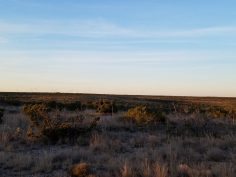 Elder ranch23