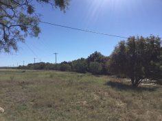 Hoelscher 247 Acres Property_4