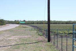Hoelscher 247 Acres Property_46