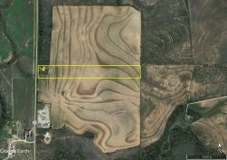 Scarlet Scurry Lot 1 Aerial