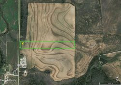 Scarlet Scurry Lot 2 Aerial